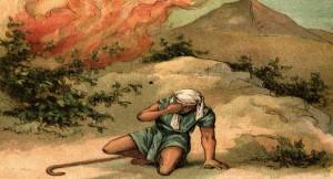 prophet 4