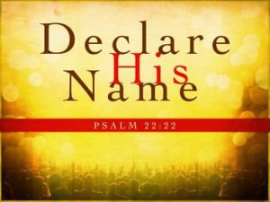 DECLARE HIS NAME