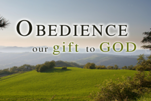 obedience1
